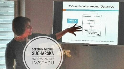 """Wokół winy i wstydu"" – seminarium ISTDP"